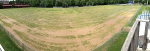 06-16-13 After herbicide application & heavy top dressing